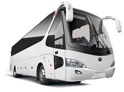Bus & VIP Bus