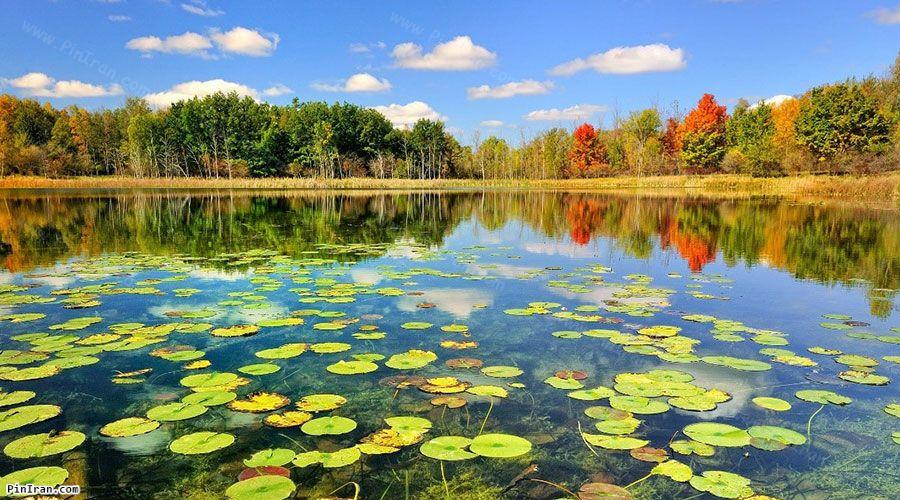 Anzali Lagoon 1