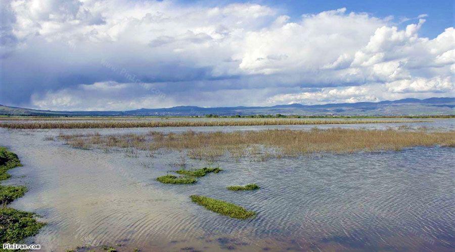 Bisheh Dalan Wetland 1