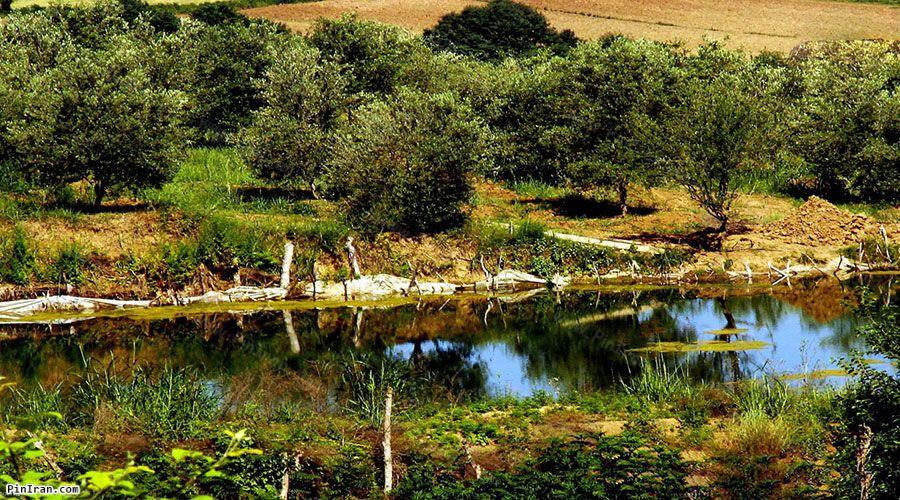 Golestan National Park 1