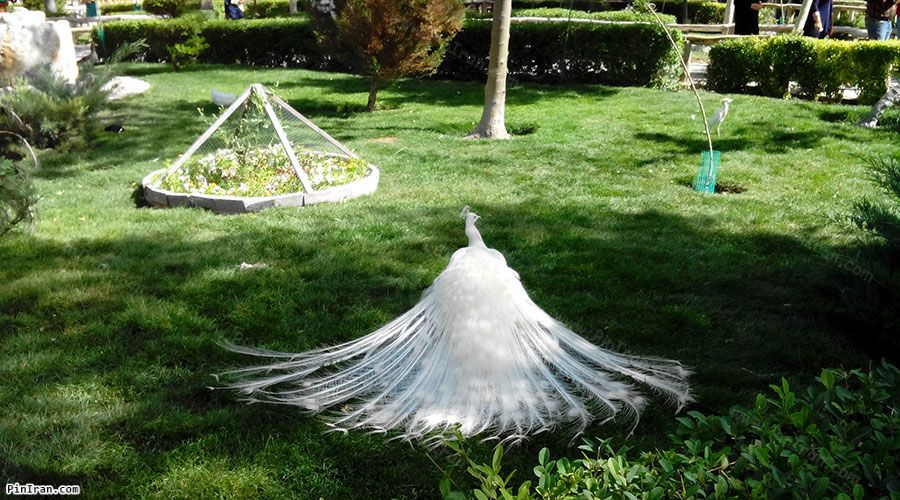 Isfahan Birds Garden 2
