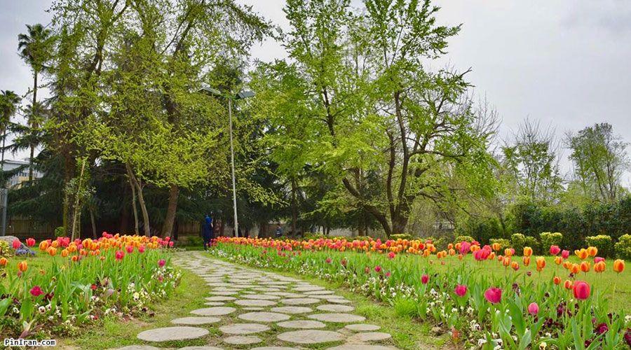 Mohtasham Garden 3