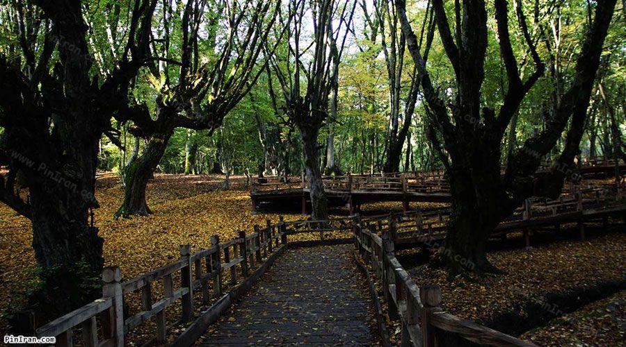 Naharkhoran Park 2