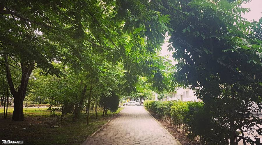Rasht Mellat Park 1