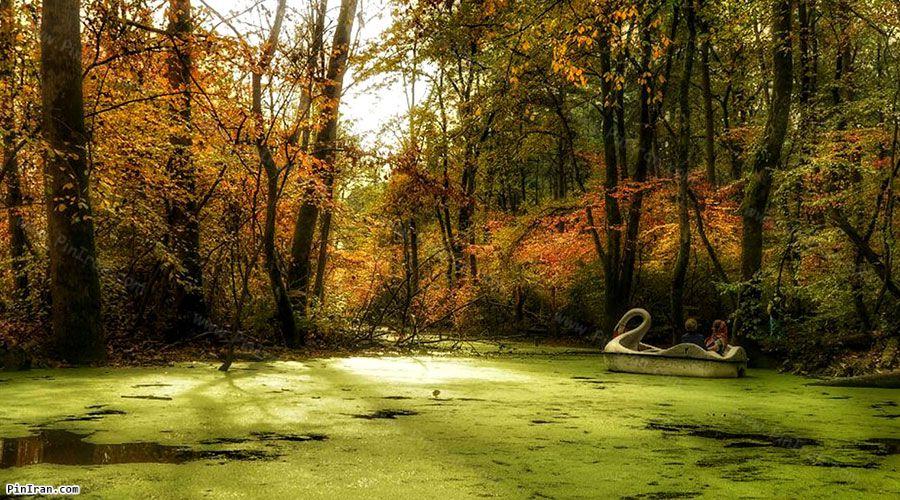 Saravan Forest Park 1