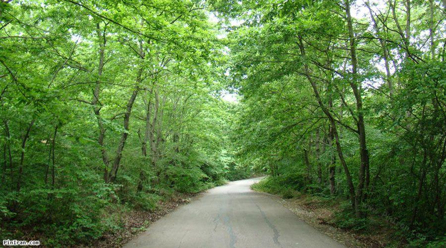 Saravan Forest Park 3