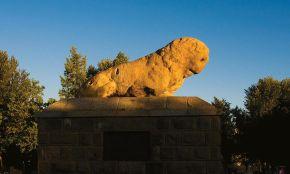 Stone Lion (Shir Sangi)