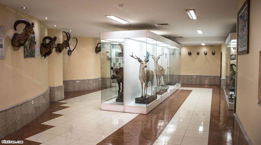Urmia Museum 2