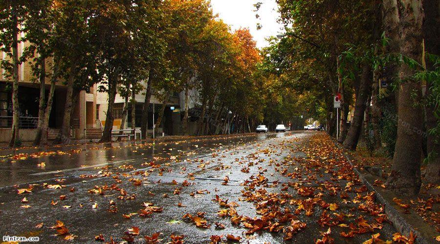Valiasr Street 1