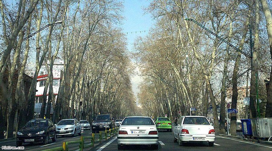 Valiasr Street 2